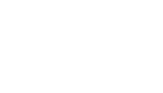 Mobilni Barmani